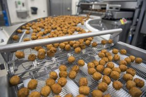 Produktionslinie für die Herstellung und Verarbeitung von Fleischersatzstoffen