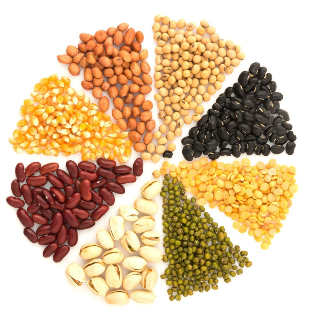 Several sources of plant based proteins.