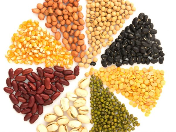 several beans - plant based protein