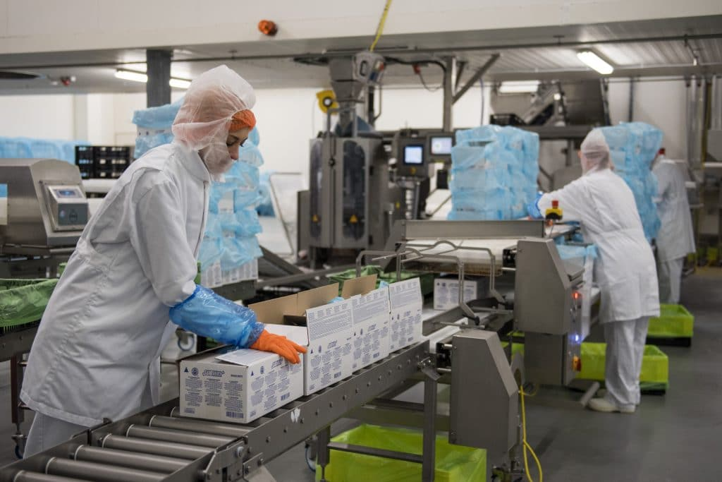 Meat substitutes: High care production and packaging facilities