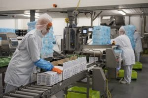 High care production and packaging faciliteis
